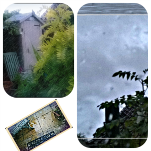 10082014 210801 rainy yard collage