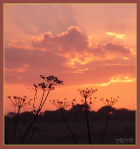 22092014 195049 sunset