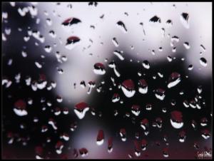16102014 094705 Rainy morning c