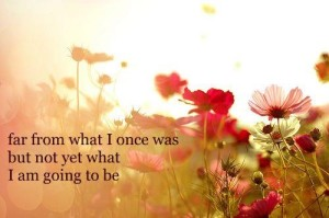 inspirational-quotes-large-msg-133224818904-300x199
