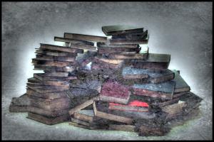 2014-27-11--11-28-56 books c