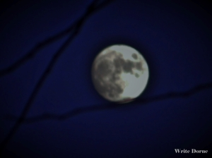 New Image full moon