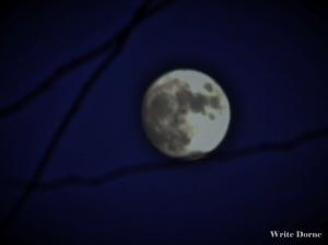New Image full moon