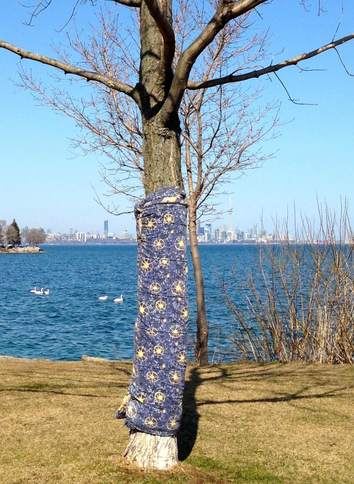 tree wrapped in a blue blanket