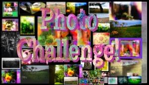 photo challenge new 1