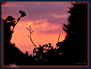 22092014 194321 sunset