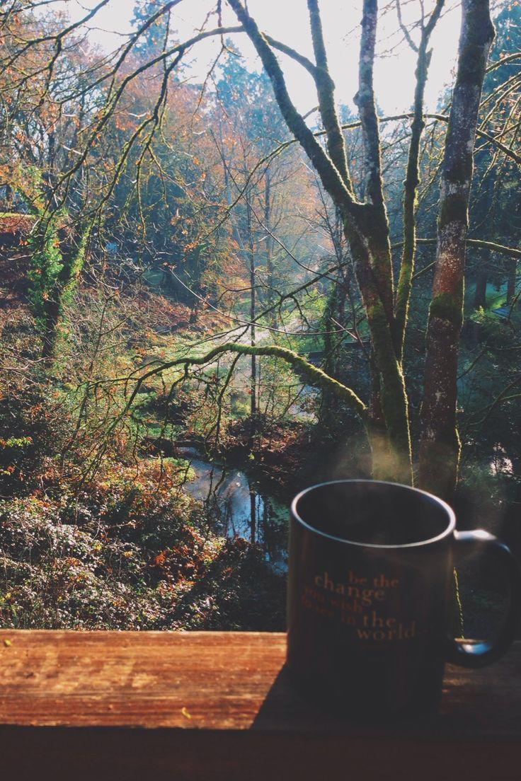 Beautiful Coffee Mug Sunshine Images