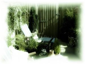 garden in summer 1