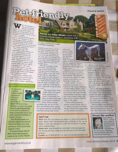 This article was published by ABM Publishing Ltd (UK) in Dogs Monthly, in October 2010