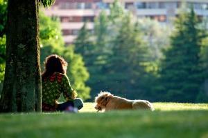 dog-walking-daisy-post-3